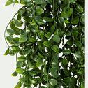 Plante crassula artificielle tombante en pot - vert L79cm-ASSULA