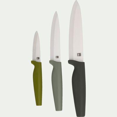 Lot de 3 couteaux de cuisine - dégradé vert-CERA