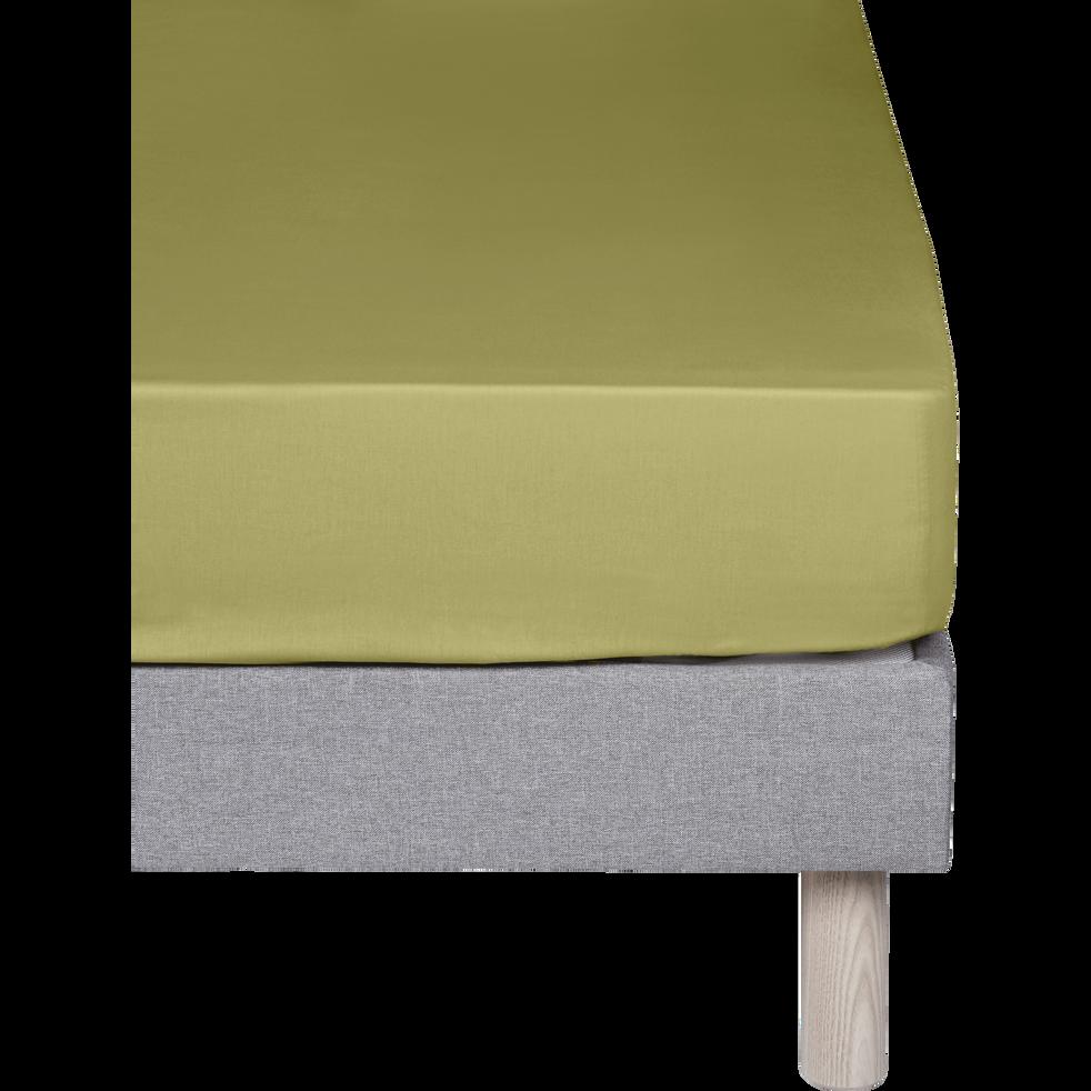 Drap housse en coton Vert guarrigue 160x200cm -bonnet 25cm-CALANQUES
