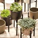 Cache-pot vert cèdre mat en céramique (plusieurs tailles)-TUSCA