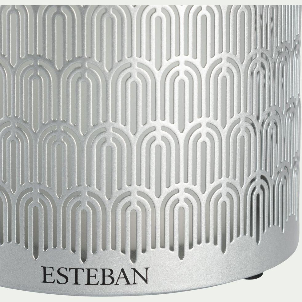 Brume diffuseur de parfum en métal gris lumière - 100ml-BRUME