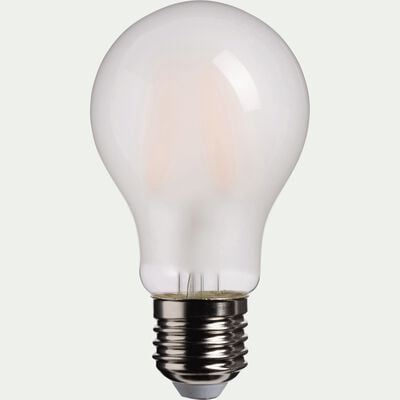 Ampoule LED verre dépoli blanc chaud D6cm E27-STANDARD