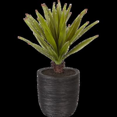 plantes artificielles et fleurs d co int rieur alinea. Black Bedroom Furniture Sets. Home Design Ideas