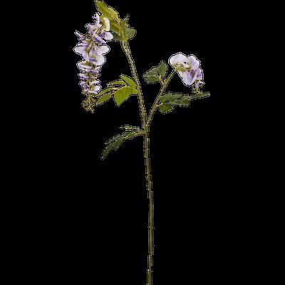Plante artificielle glycine violette H100 cm-GLYCINE