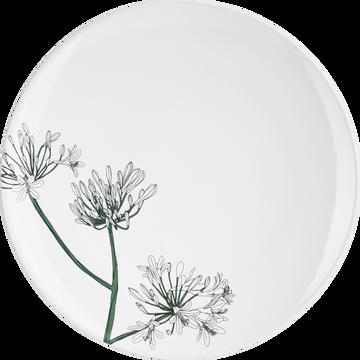 Assiette à dessert en grès blanc ventoux décorée D21,5cm-AGAPANTHE