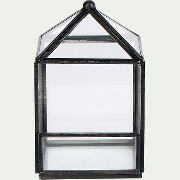 Terrarium en verre L9xl9xH14cm - transparent-SUCLE