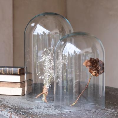 Cloche en verre transparent (plusieurs tailles)