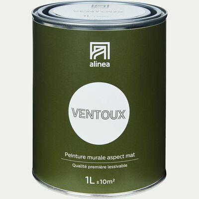 Peinture acrylique mate multi-supports - blanc ventoux 1L-PEINTURE