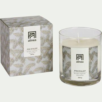 Bougie parfumée senteur Pin d'Alep 250g-PIN D ALEP