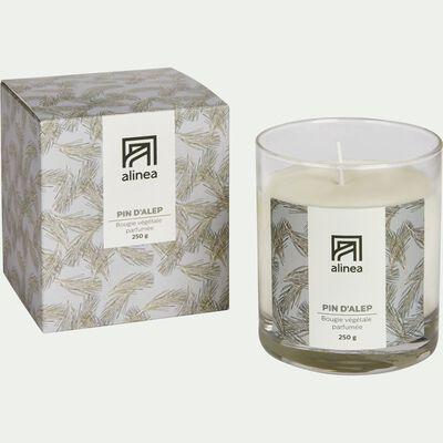 Bougie parfumée Pin d'Alep 250g-PIN D ALEP