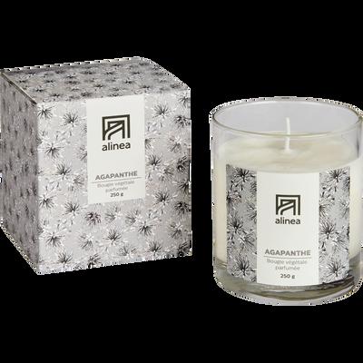Bougie parfumée Agapanthe 250g-AGAPANTHE
