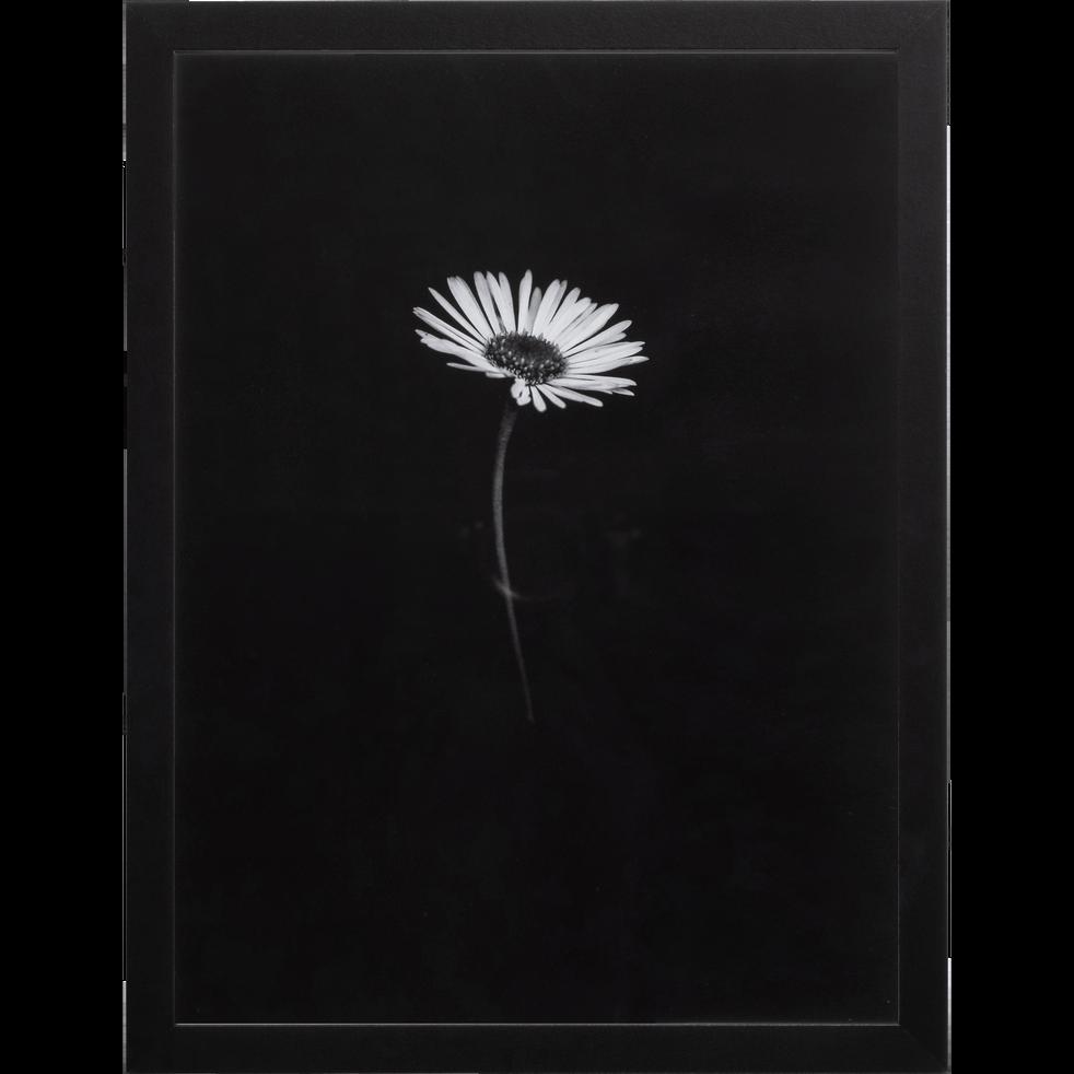 Image encadrée 30x40cm-MARGUERITE