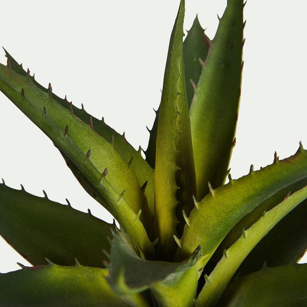 Plante artificielle aloe en pot - vert H23cm-ALOE POT