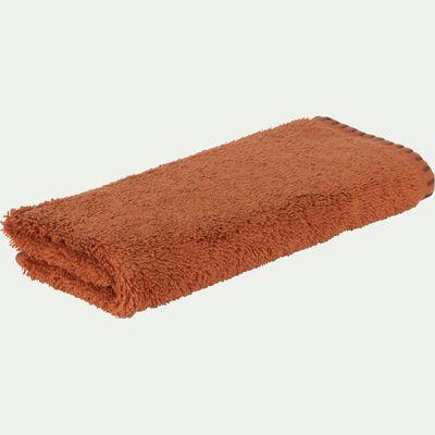 Lot de 2 serviettes invité en coton - marron rustrel 30x50cm-Ynes