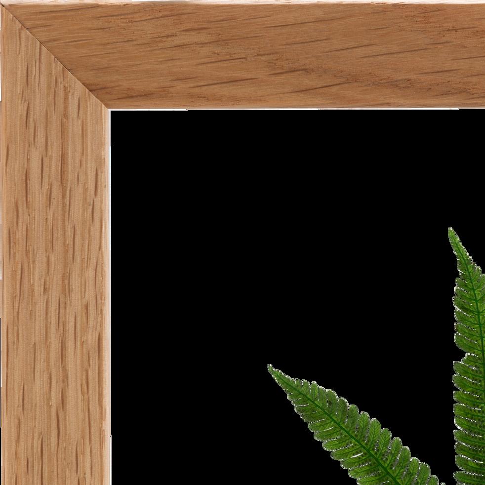 Plante encadrée fougère 24x24 cm-NATURE