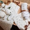 Ensemble cape de bain et gant bébé avec imprimé - multicolore-Graminées