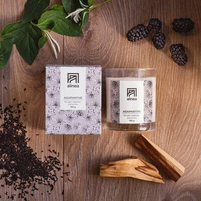 Bougie parfumée senteur Agapanthe 160g-SIGNATURE