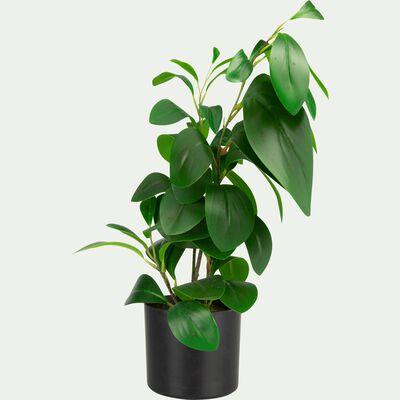 Plante artificielle ficus en pot - vert H46cm-BUISSON