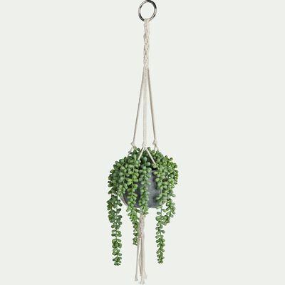 Plante retombante artificielle séneçon de Rowley - vert H70cm-SENECON