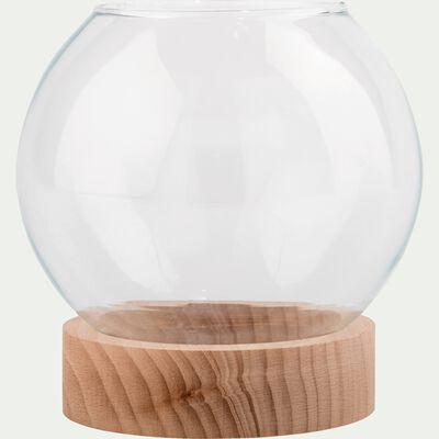 Terrarium en verre et socle en bois - transparent D14cm-MANHATTAN