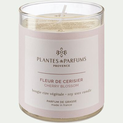 Bougie parfumée senteur Fleur de Cerisier 180g-MANON