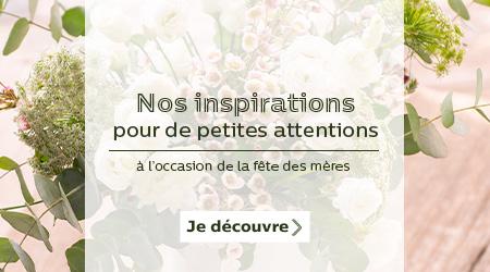 alinea-promotion