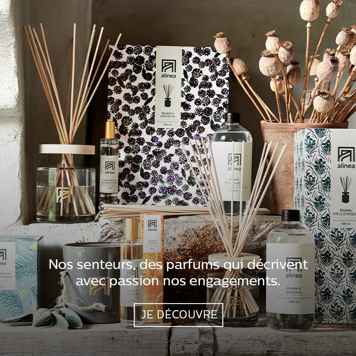parfumerie-interieur-alinea